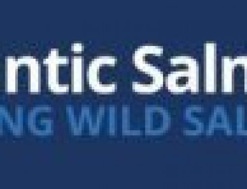 Our Solid Commitment to Putting #WildSalmonFirst – The Atlantic Salmon Trust