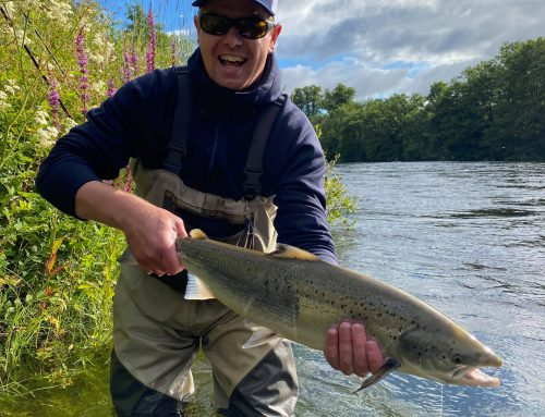 Lomond System News – week ending 19th July 2020