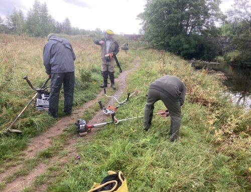 River Endrick Voluntary Work Party 8th August 2021